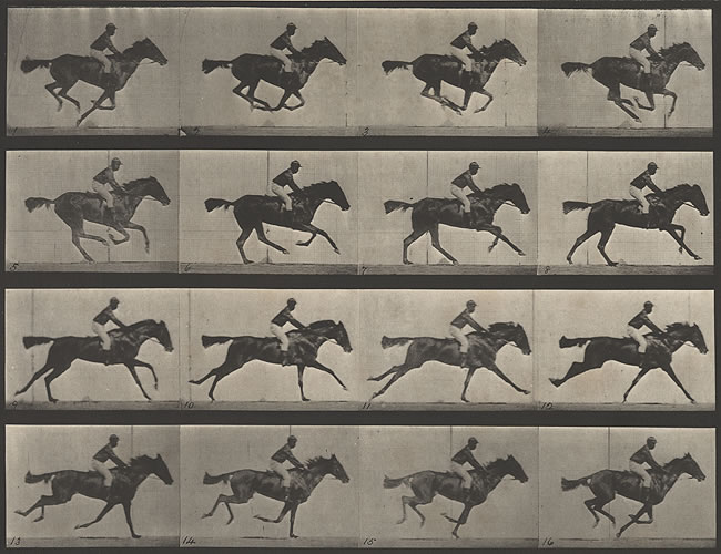 muybridge_large